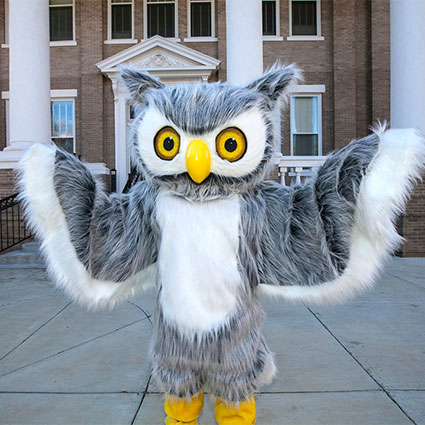 ody the owl